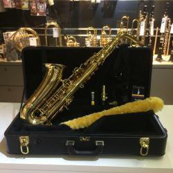 Yanasigawa Saxophone alto A901 et accessoires