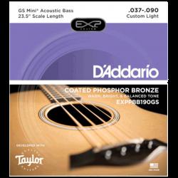 D'ADDARIO EXPPBB190GS - TAYLOR GS MINI 37-90