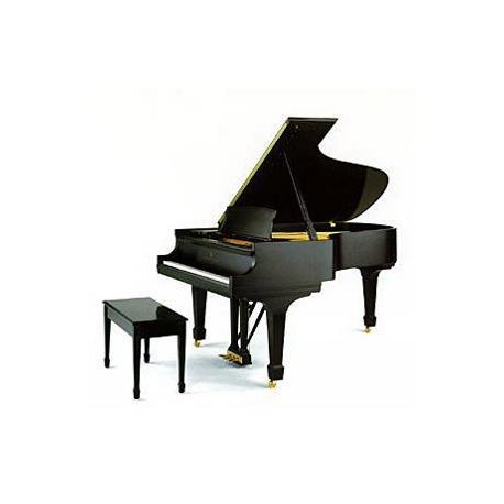 PIANO À QUEUE STEINWAY SERIE B