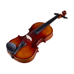 VIOLON ACOUSTIQUE STAGG VN-1/2