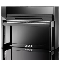 SCHIMMEL C116 - MODERN CUBUS