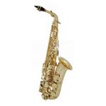 achetez votre saxophone alto Eastman sur scotto musique. Scotto Musique un large choix d'instrument de musique en vente en ligne