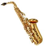 Scotto musique, votre site internet de vente en ligne d'instrument de musique à vent
